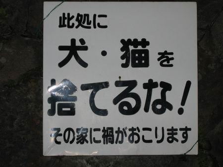 ヤングセンター駐ヤ場看板2/051209.JPG